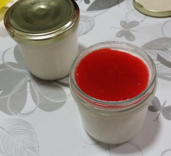 Yogur natural casero