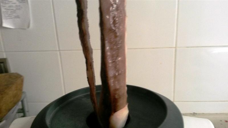 Cocer Pulpo en nuestra Thermomix® . salpicon y pulpo a la gallega
